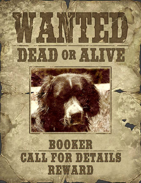 Booker wanted